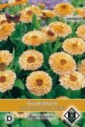 Apricot Delight Marigold Calendula seeds