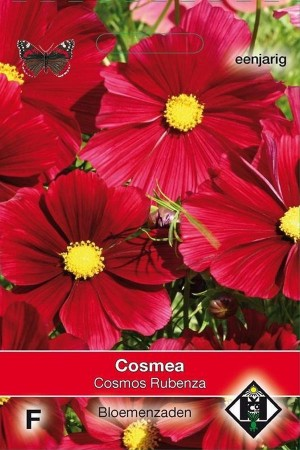 Rubenza - Rode Cosmos zaden
