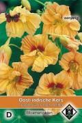 Peach Melba Tropaeolum Nasturtium seeds