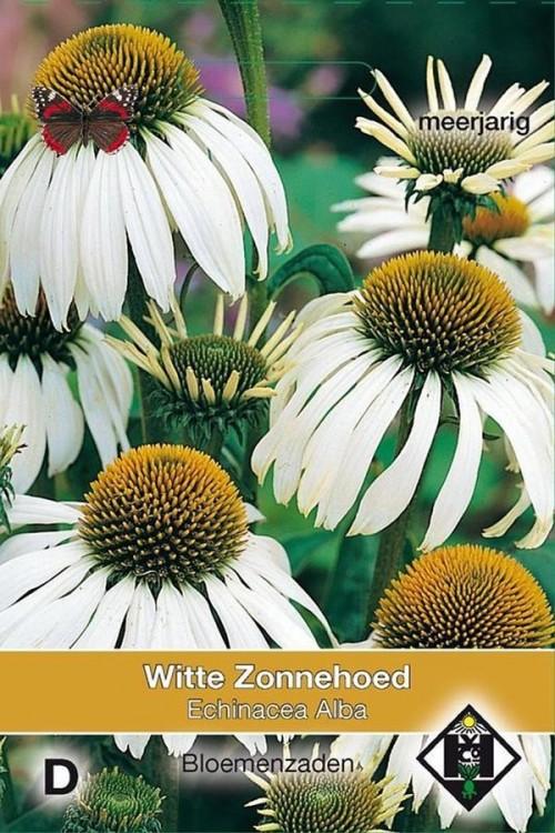 Alba Zonnehoed Echinacea zaden