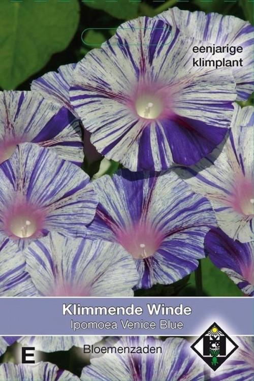 Venice Blue Klimmende Winde Ipomoea zaden