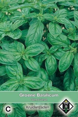 Genovese groene Basilicum...