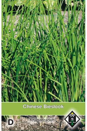 Chinese Garlic Chives seeds