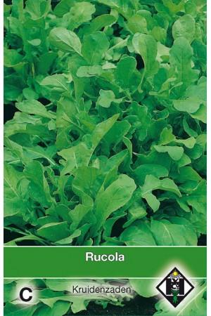 Eruca sativa Rucola zaden