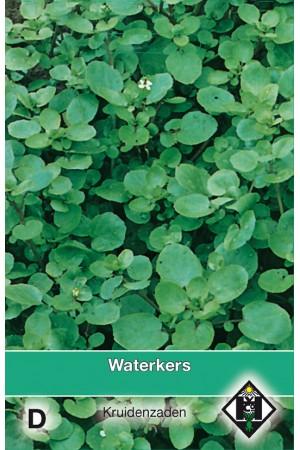 Waterkers zaden