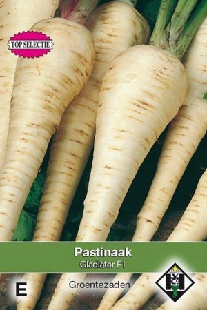 Gladiator F1 Parsnip seeds