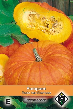 Red Etampes Pumpkin seeds
