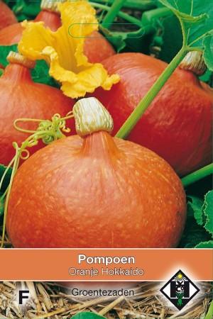 Oranje Hokkaido Pompoen zaden