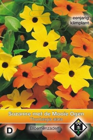 Suzanne met de Mooie Ogen...