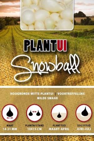 Snowball witte plantuien 250g