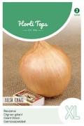 Ailsa Craig giant onion seeds