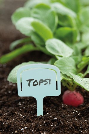 10 tee plant labels seed...