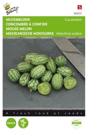 Muis Meloen - Cucamelon