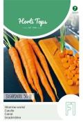 Sugarsnax 54 F1 - Vitamine wortel