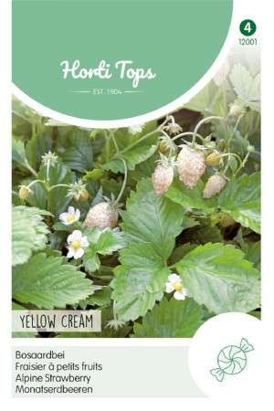 Yellow Cream - Bosaardbei