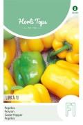 Lirica F1 - Yellow Bell Pepper