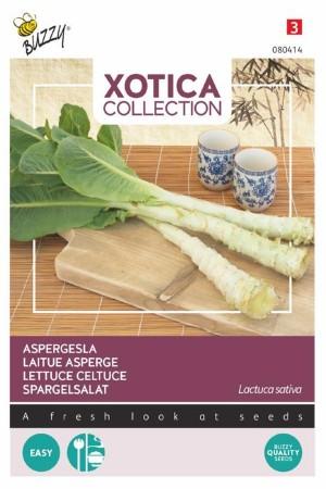 Lettuce Celtuce seeds