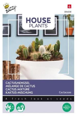 Cactusmengsel - Cactus zaden