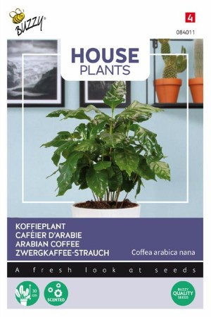 Koffieplant Coffea Arabica...