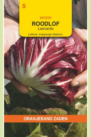 Leonardo Radicchio seeds
