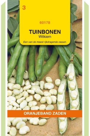 Witkiem Fava bean Broad beans