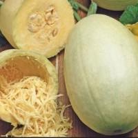 Pompoen - Kalebas - Vruchtgroente Groentezaden kopen? Tuinzaden.eu