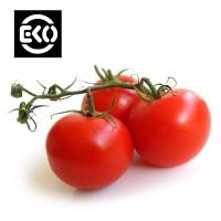 Organic seeds • Tuinzaden.eu
