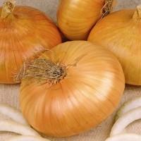 Onions -   Fruit & Vegetable Seeds