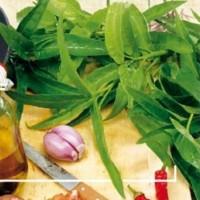 Kangkong - Waterspinazie - Groentezaden Zaden kopen? Tuinzaden.eu