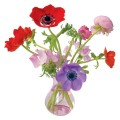 Flat Flowers Raamstickers